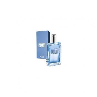 Avon Individual Blue